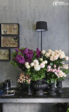 Floral store Odorante in Paris