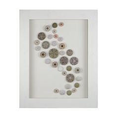 A beautiful display of natural colorful green and purple sea urchin shells laid out in a graceful swirl make this enchanting wall decor a must for anyone wanting to add a gentle hint of the seashore to their home.