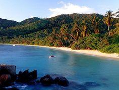 Le spiagge più belle delle Seychelles isola per isola - Da Mahe a Praslin fino a La Digue, i luoghi ideale per lo snorkeling e le immersioni. http://www.marcopolo.tv/asia/seychelles-spiagge-piu-belle