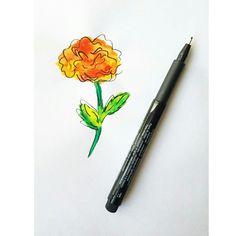 Watercolor marigold