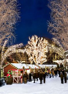 Decorated with five million twinkling lights and 700 Christmas trees, Liseberg Amusement Park's Christmas market is Scandinavia's greatest light show.