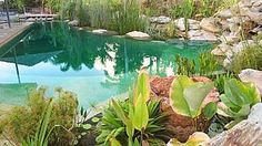 Greenbuild – view construction service: EcoSplash Living Waters — Queensland's discounted building materials advertiser