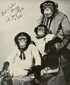 Literate monkeys.