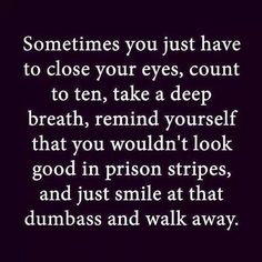 Sometimes you just have to close your eyes, count to ten, take a deep breath, remind yourself that you wouldn't look good in prison stripes, and just smile at that dumbass and walk away,