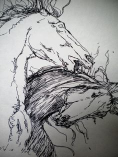 Rough Edgy Ink Sketch of Horses Fighting by PatinaAndPurl on Etsy, $30.00