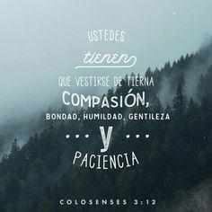 Dado que Dios los eligió para que sean su pueblo santo y amado por él, ustedes tienen que vestirse de tierna compasión, bondad, humildad, gentileza y paciencia. Colosenses 3:12