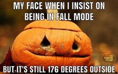 Fall Humor, Fall Memes, Samhain, Mabon, Fall Halloween, Halloween Costumes, Halloween Quotes, Happy Halloween, Spooky Memes
