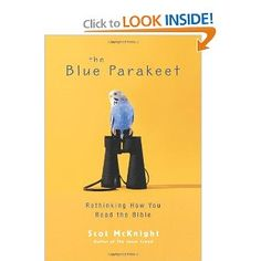 Scot McKnight's books have always challenged me to grow in faith, and The Blue Parakeet is the next book of his on my list. $10.19 on Amazon.