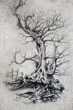 old tree drawing, illustration, tree roots. ink pen drawing ...adjusted and altered digitally