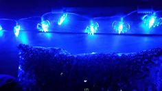Closer look at my bat lights
