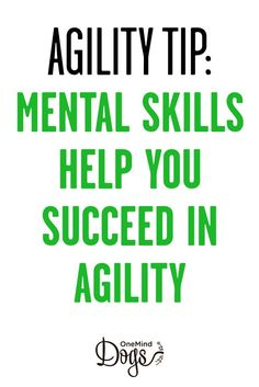 When you compete in agility at the higher levels and bigger competitions, it is not enough to be just a technically competent handler. You will also need some mental skills to succeed.