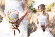 Protea & succulent small bouquet with berries Protea Wedding, Wedding Bouquets, Wedding Dresses, Protea Bouquet, King Protea, South African Weddings, Small Bouquet, Princess Wedding, Rustic Wedding