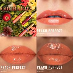 Peach Perfect LipSense by SeneGence is a Limited Edition lipcolor described as a sheer, medium, earthy orange shade with a matte finish.  Part of the Orchard Collection, click to purchase yours.  Reminiscent of Peach LipSense.  #lipsense #peachlipsense #peachperfectlipsense #senegence #orchardcollection