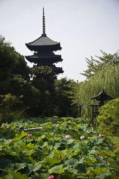 Summer in To-ji Temple, Kyoto, Japan Go To Japan, Japan Japan, Japan Trip, Kobe Shoes, All About Japan, Turning Japanese, Nike Fashion, Nike Shoes Cheap, Japan Destinations