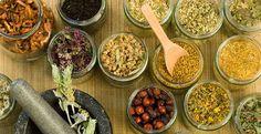 Sai cos'è la Fitorerapia? Scopri di più >> http://goo.gl/sRct5O  #fitoterapia #salute #medicina #noene
