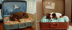 ideas for Old Suitcase Vintage Luggage | Projects for Vintage Suitcases | Ideas for Home Garden Bedroom Kitchen ...