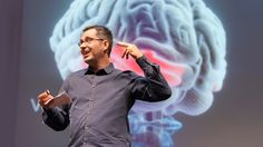 Information designer Tom Wujec talks through three areas of the brain that help us understand words, images, feelings, connections. In this short talk from TEDU, he asks: How can we best engage our brains to help us better understand big ideas?