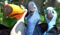 """Rafael, Blu, and Jewel from """"Rio"""". Setting: century Minnesota and Rio de Janeiro. Film Rio, Rio 2 Movie, Film D'animation, Computer Animation, Animation Film, Cartoon Movies, Disney Movies, Disney Pixar, Disney Characters"""