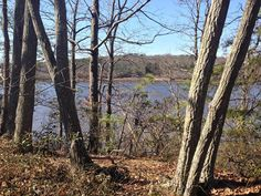 12. River Overlook Trail, Peek Preserve