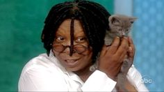 """""""Whoopi Goldberg Adopts Cat Thrown From Bridge [Aug., 2011]: The Oscar winning actress and co-host of ABC's 'The View' has adopted a cat that was thrown from a moving car on New York City's Verrazano-Narrows Bridge, according to New York Animal Care & Control officials. Officials said Goldberg was one of the first of more than 140 people to ask to adopt the cat, nicknamed 'Verrazano' by AC She has since shortened the kitten's name to 'Vinny.'"""""""