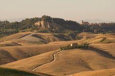 Pisa countryside - Terricciola [credits: Lorenzo Benvenuti]