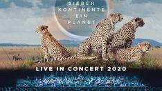 Sieben Kontinente, ein Planet | MemberPlus Raiffeisen