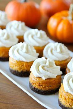 mini pumpkin cheesecakes with gingerbread crust :) yummy