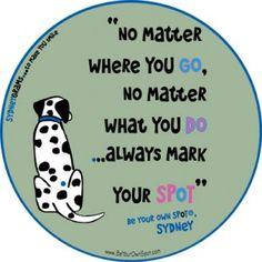 no matter. mark your SPoT.