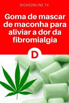 Fibromialgia tratamento | Goma de mascar de maconha para aliviar a dor da fibromialgia | Essa planta pode aliviar as dores causadas pela fibromialgia.