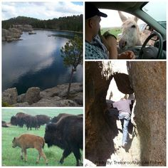 Kid friendly Adventures in the @Black Hills, South Dakota  - great attractions & activities for tweens & teens
