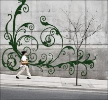 """moss """"grafitti""""-- lots of potential for exposed bare walls, Bandywood or Abbott Martin sides of Kroger"""