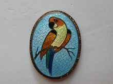 "Vintage Parrot Bird ""Beautiful"" Cloisonne 1930's Brooch Pin"