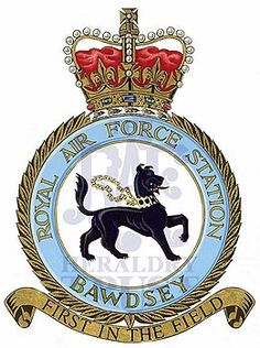 Company Letterhead Template, Fortune Favors The Bold, Royal Air Force, Crests, Badges, Photo S, Aircraft, British, Aviation