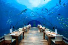 Die besten Hotels und Resorts auf den Malediven & Co.