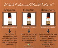 Which Cedarwood should you choose?