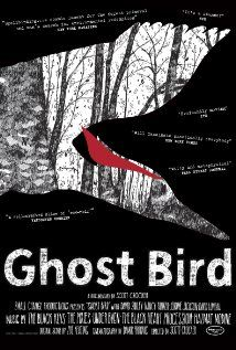 Documentary about the thought-to-be extinct  Ivory-billed woodpecker & the quest to find  one in Arkansas