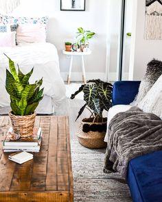 109 Likes, 44 Comments - Alisha Bachelorette Pad, Studio Apartment, Interiors, Interior Design, Nice, Bed, House, Instagram, Home Decor