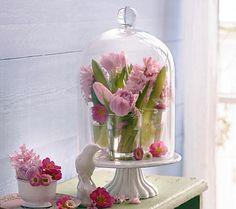 Frühling im Mini-Gewächshaus - Tischdeko mit Blumen 4 - [LIVING AT HOME]