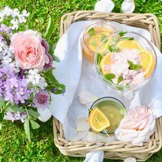 Fragrant frozen yoghurt of blood orange with a waft of spring botanicals