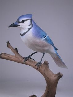 Life Size Blue Jay 9-1/2 inch Hand Carved Wooden by jjstudio