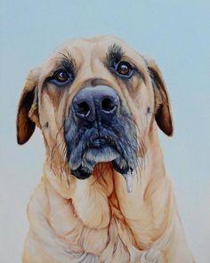 Забавные портреты собак от Джеймса Руби