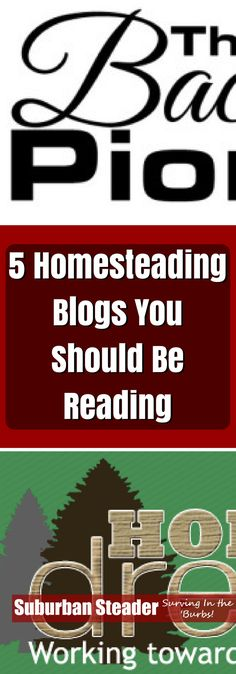 Homesteading blogs a