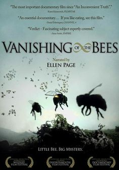 Vanishing of the Bees. This documentary details the economic, political and ecological consequences of a dwindling world honeybee population. It's a phenomenon with a name -- Colony Collapse Disorder -- but no explanation or solution exists.