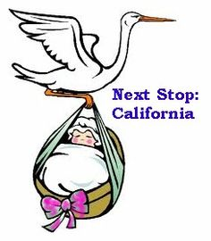 The California birth indexes cover from 1905 to 1995, some ninety years of records. Birth records were not standard prior to 1905, some were available at county levels or with church records so can be found at those sources. These birth indexes cover all of California, all counties.