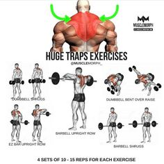 Want Bigger Traps? Try this workout LIKE if you found this useful and FOLLOW @musclemorph_ for more exercise & nutrition tips . ✳Enhance your progress with @musclemorph_ supps ➡MuscleMorphSupps.com #MuscleMorph via ✨ @padgram ✨(http://dl.padgram.com)