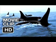 Stop the breeding of sea life in entertainment parks