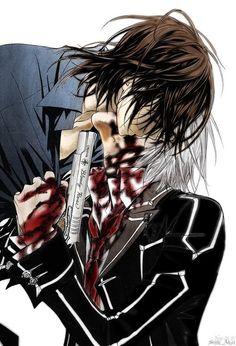 Zero Kiryu & Kaname Kuran - Vampire Knight Anime