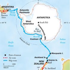 Enjoy a 35 day luxury cruise from Argentina to Antarctica with National Geographic Expeditions. We'll experience rare wildlife and beautiful landscapes. Sea Spider, National Geographic Expeditions, Antarctica Cruise, National Geographic Photography, Sydney City, Ushuaia, Adventure Is Out There, Holiday Travel, Continents