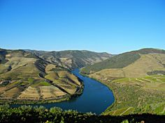 The sinuous Douro River. Douro Portugal, Amazing Places, The Good Place, River, Outdoor, Outdoors, Outdoor Games, The Great Outdoors, Rivers