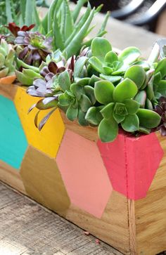 A DIY wooden planter can be painted to stand out as a table centerpiece. Get the planter box boards cut at your local Lowe's to make this project a breeze! The kids will enjoy putting their creative spin on painting the planter. Try this colorful honeycomb design for a geometric look.
